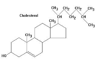 Норма уровень глюкозы холестерина в крови